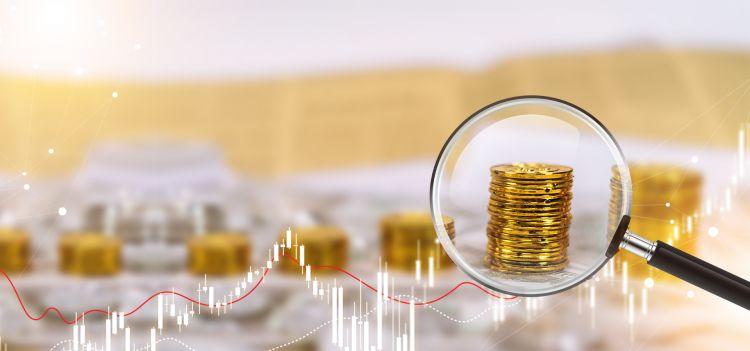 杨德龙:持有优质股票就能在市场震荡中抓住机会